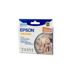 Epson T0491 Genuine Black Ink Cartridge - 450 pages