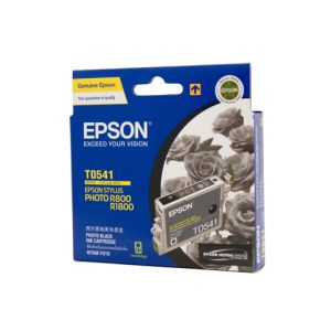 Epson T0541 Genuine Photo Black Ink - 550 pages